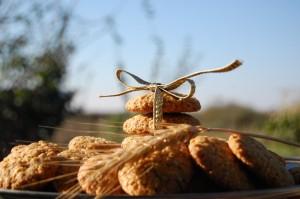 biscuiti1